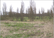 view towards Golf Club