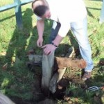 Chris digging the stocks out